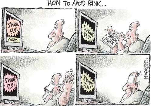 swine flu how to avoid panic