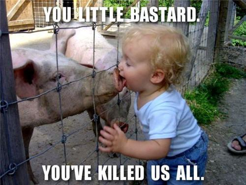 swine flu motivation poster