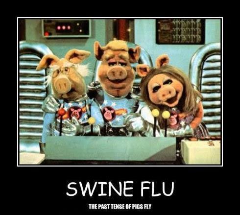swine flu muppets