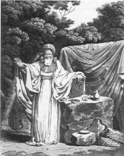 the druid ritual of oak and mistletoe