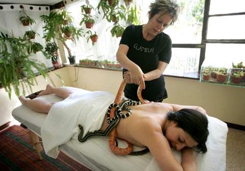 snake massages02