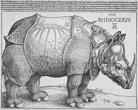 rhinoceros party