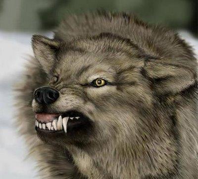 warewolf03