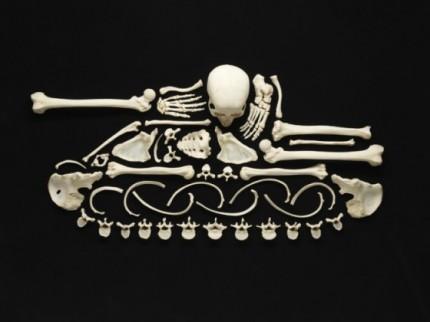 bone art2