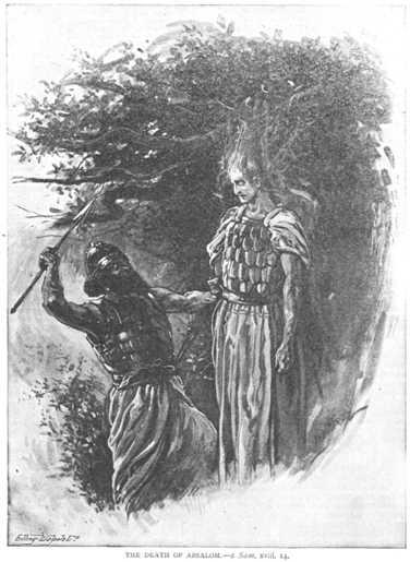 absolom son of king david