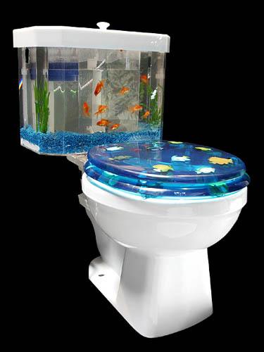 goldfish bowl toilets