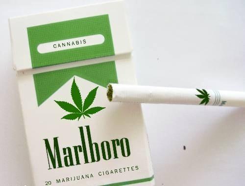 legal joints