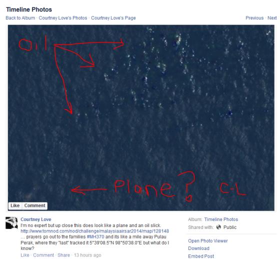 Courtney Love Found the Plane