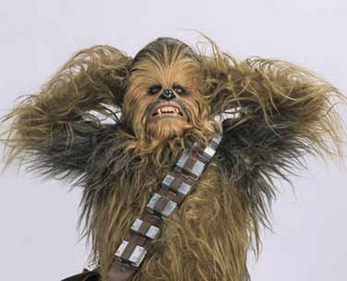 Chewbacca is Based on George Lucas's Dog
