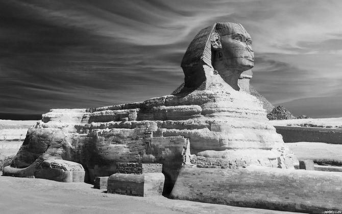 The Talking Sphinx